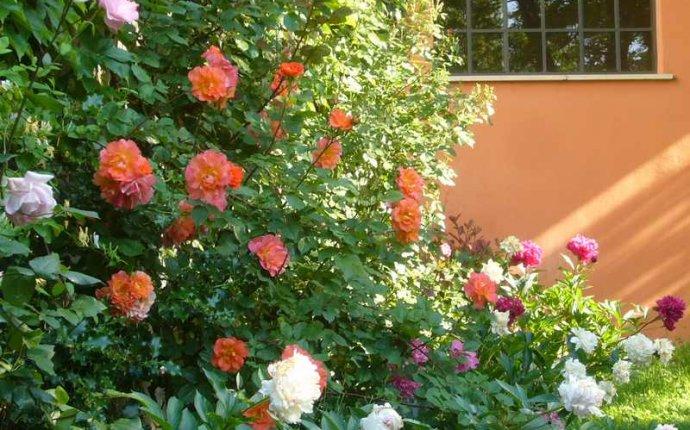 Contactez le Jardin de Beauvoir